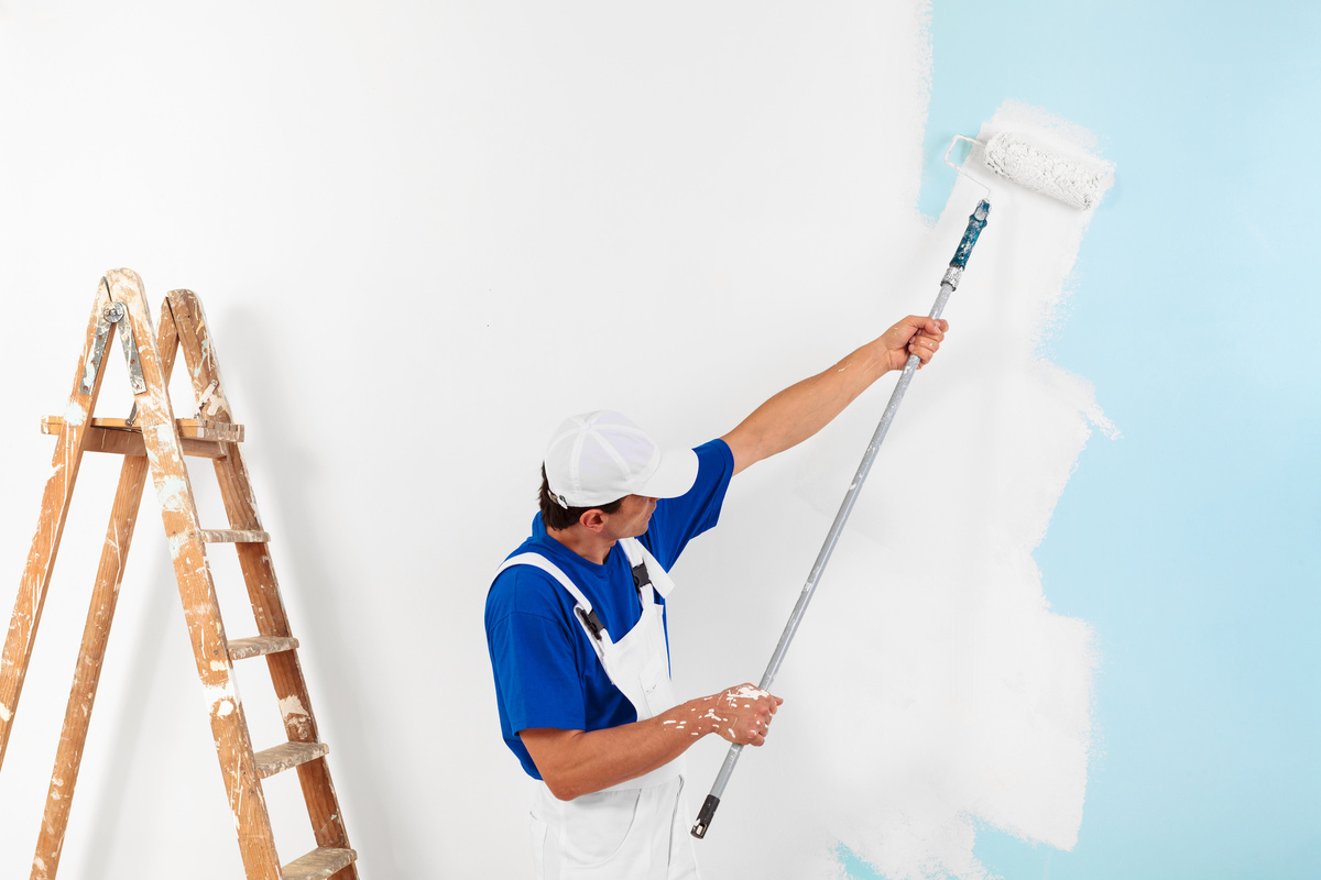 Why You Required A Specialist Painter?